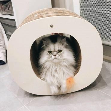 Griffoir Homycat Lettre O XL